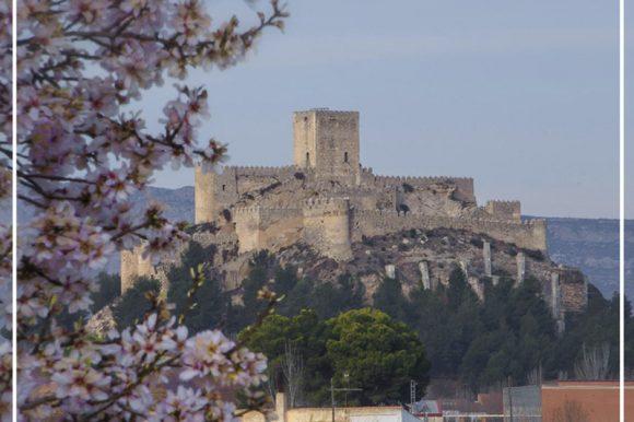 Rehabilitación del Castillo de Almansa