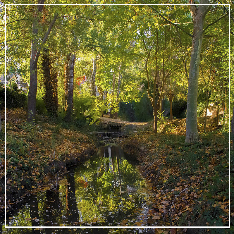 entorno natural