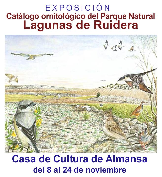 Tarjeta FB 1 ARTEC – Expo Lagunas Ruidera